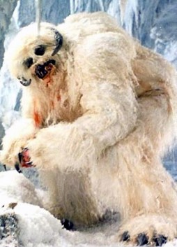 SkywalkerWampa