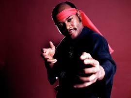 95b37e-20161130-kung-fu-fighting